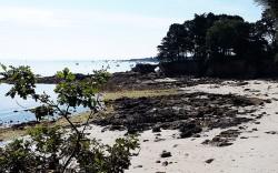 plage de bot-conan finistère sud à fouesnant