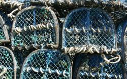 casiers de pêcheur bleus bretagne